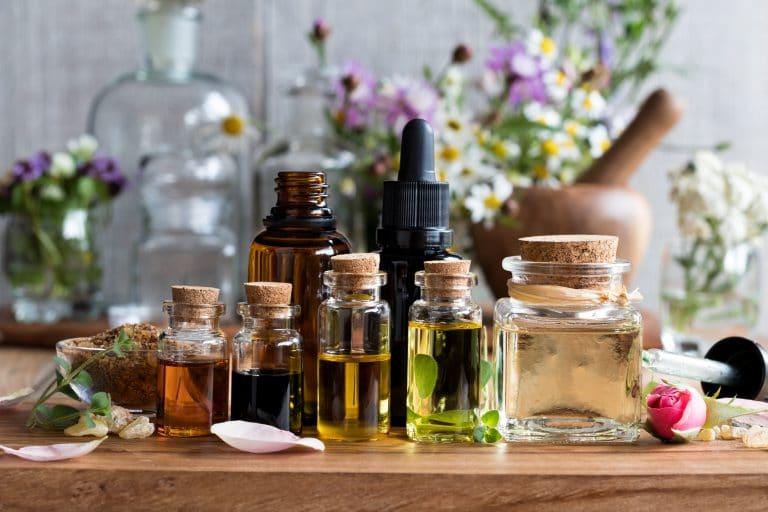 L'aromathérapie : définition et bienfaits des huiles essentielles